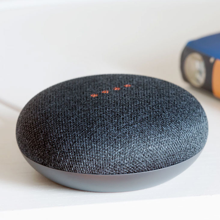 Google Home Mini [Variants] [Attributes & Options]